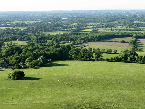 Sussex from Ditchling Beacon - maria joy