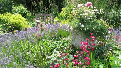 Ditchling Summer Gardens by maria joy