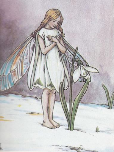 The Snowdrop Fairy - Cicely Mary Barker