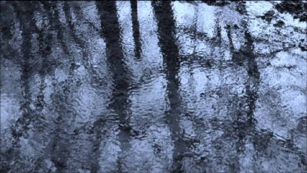 blue reflection - m.joy