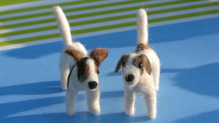 Terriers - m.joy