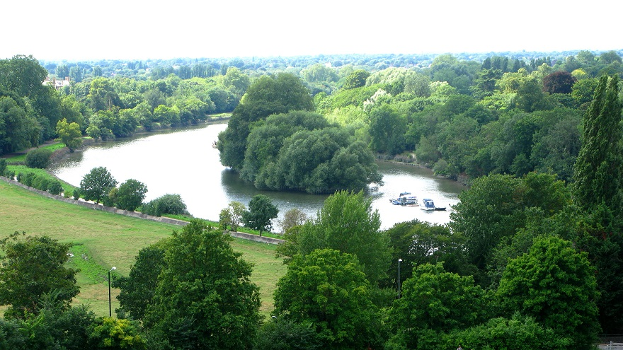 Petersham meadows, the Thames, Richmond - m.joy