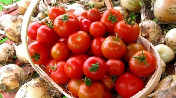 Tomato Soup - m.joy