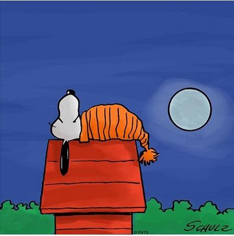Snoopy - Schulz