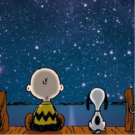 Snoopy - Under the stars