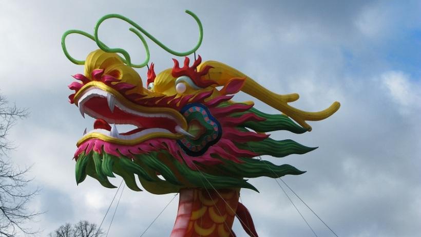 Wuji Swimming Dragon - m.joy