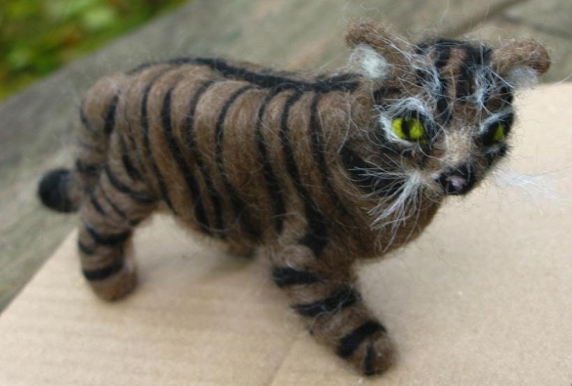 Scottish Wildcat - m.joy