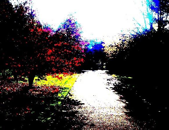 Red Leaves - m.joy