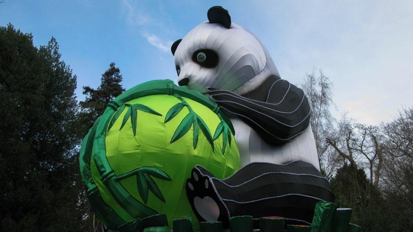 Panda holding Bamboo tree - m.joy
