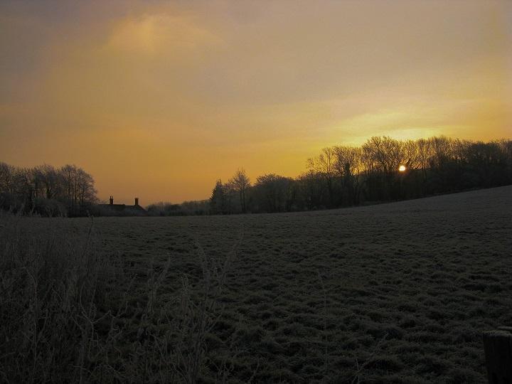 Frosty Morning - m.joy