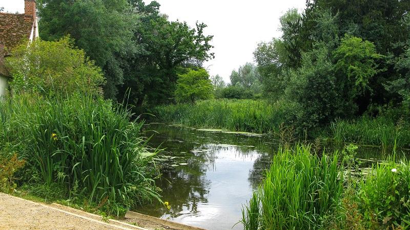Mill stream at Flatford Mill - m.joy